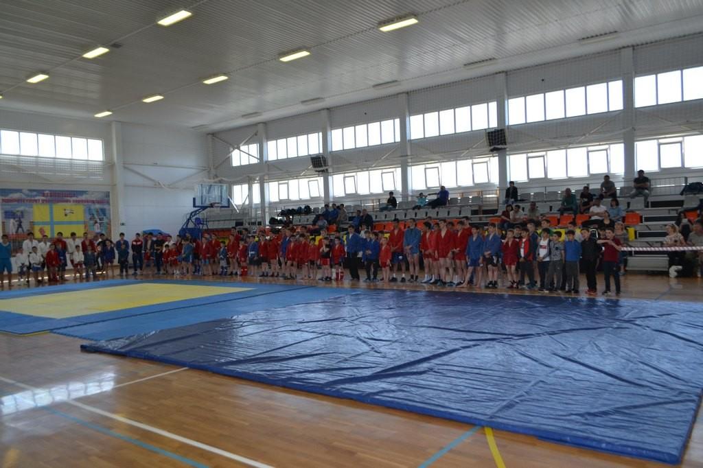 турнир по самбо (2)